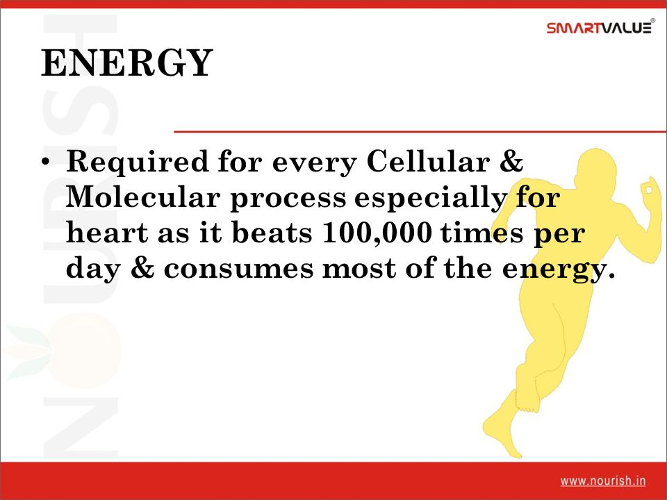 ENERGY Required for every Cellular & Molecular process especially for heart as it beats 100,000 times per day & consumes most of the energy.