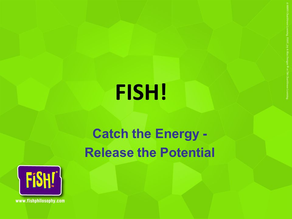 Catch the Energy - Release the Potential