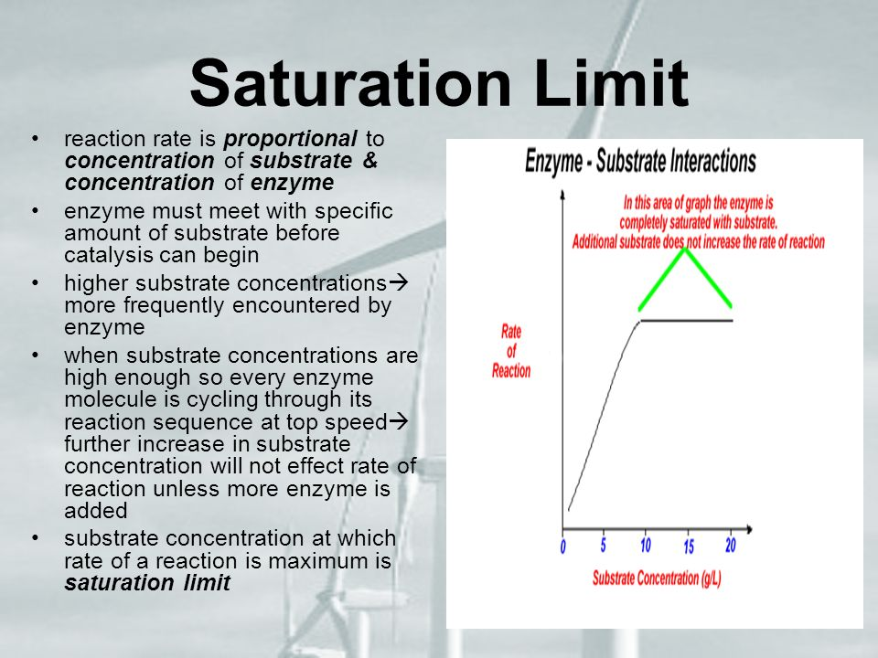 Saturation Limit reaction rate is proportional to concentration of substrate & concentration of enzyme.