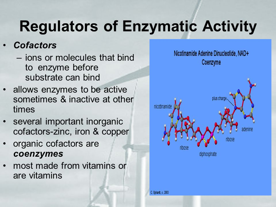 Regulators of Enzymatic Activity