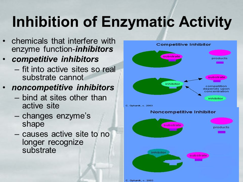 Inhibition of Enzymatic Activity