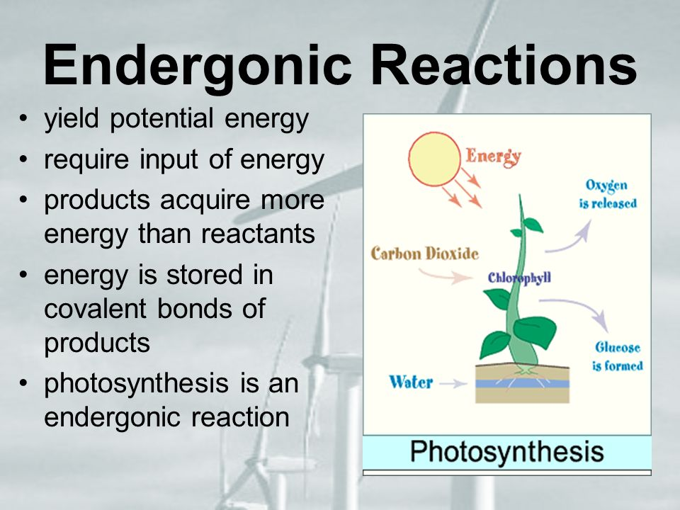 Endergonic Reactions yield potential energy require input of energy
