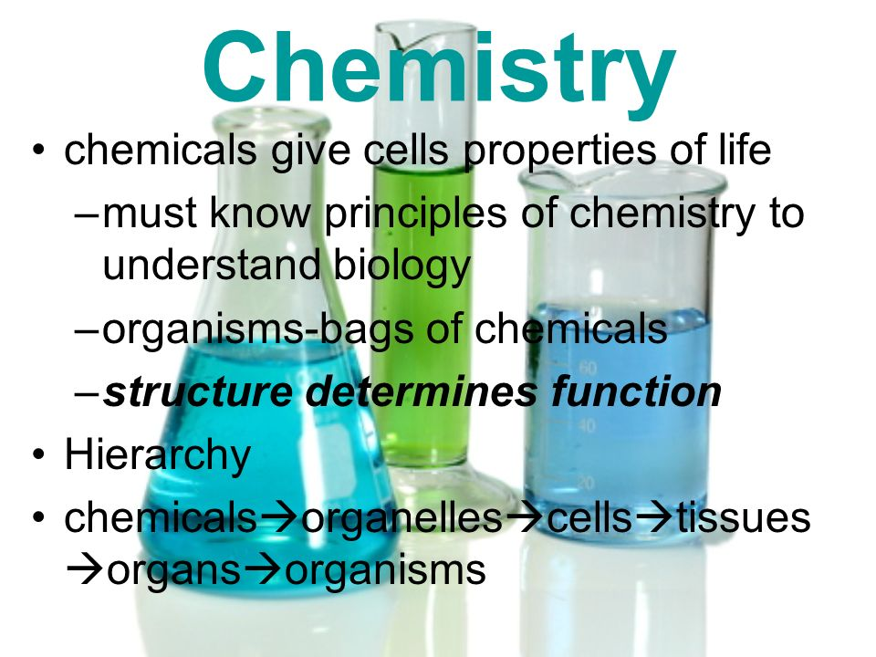 Chemistry chemicals give cells properties of life