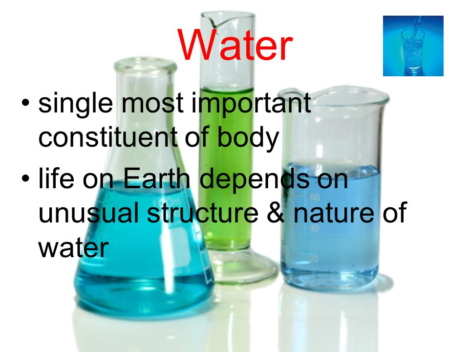 Water single most important constituent of body