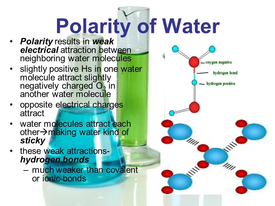 Polarity of Water Polarity results in weak electrical attraction between neighboring water molecules.