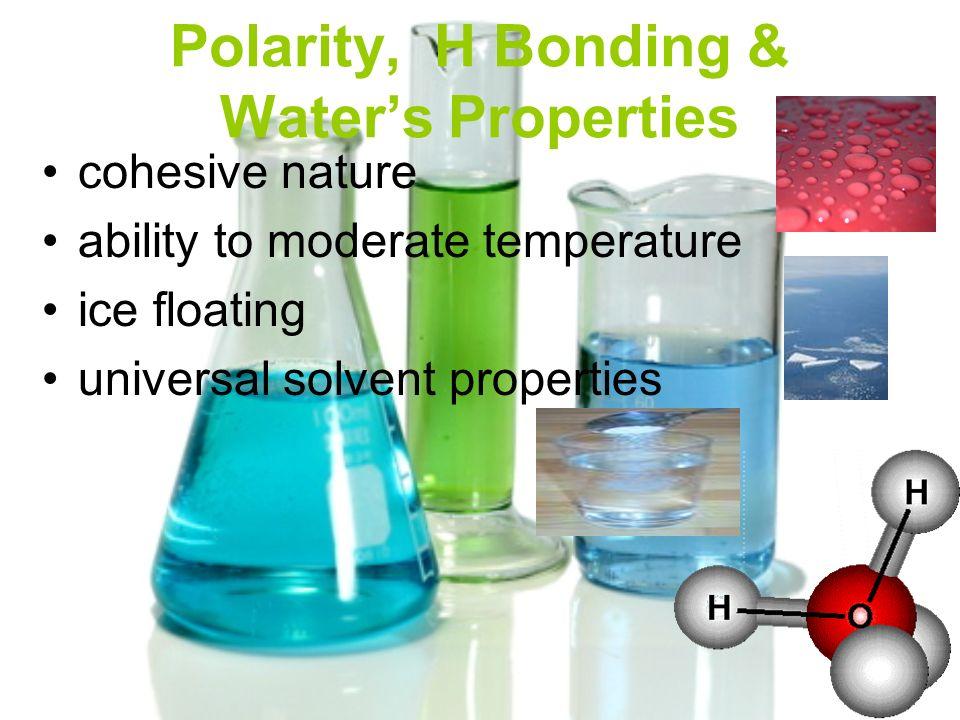 Polarity, H Bonding & Water's Properties