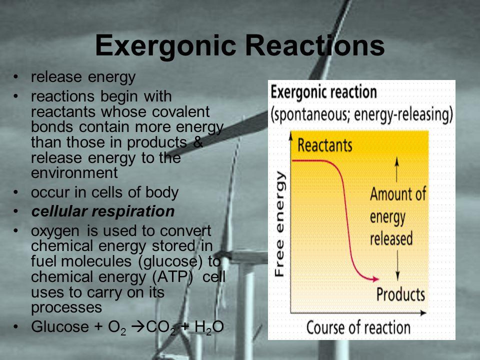 Exergonic Reactions release energy