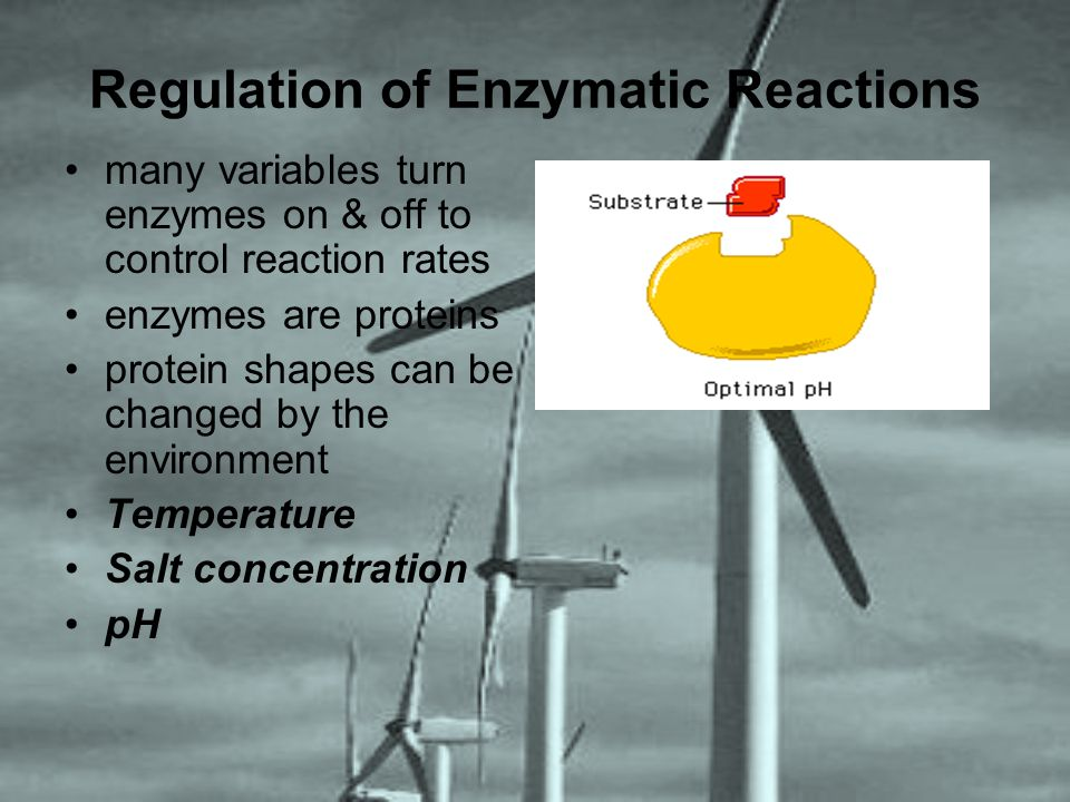 Regulation of Enzymatic Reactions