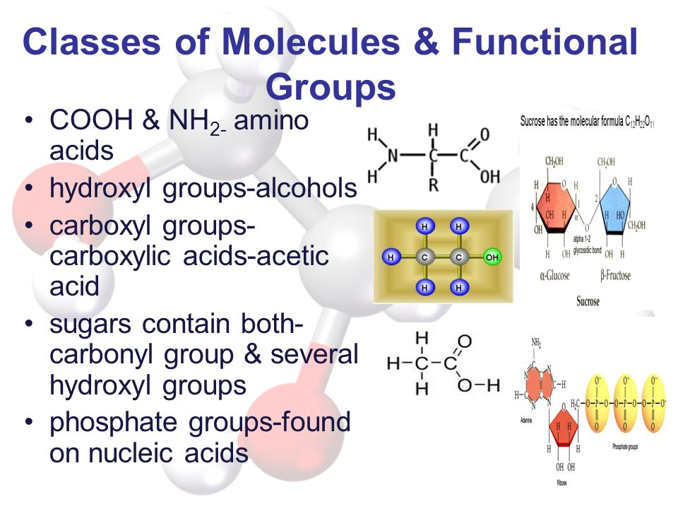 Classes of Molecules & Functional Groups