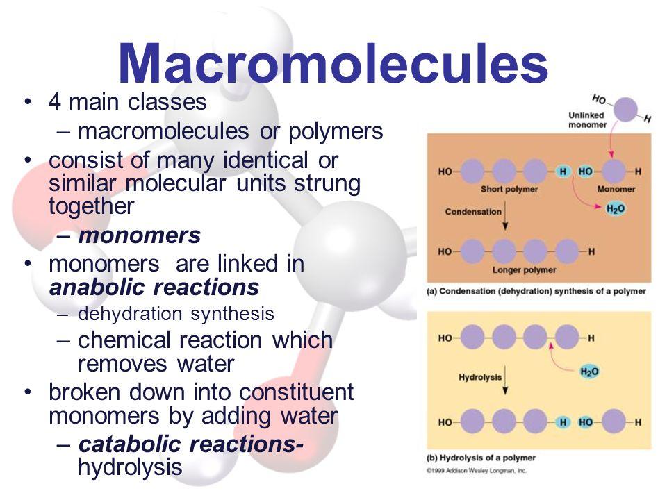Macromolecules 4 main classes macromolecules or polymers