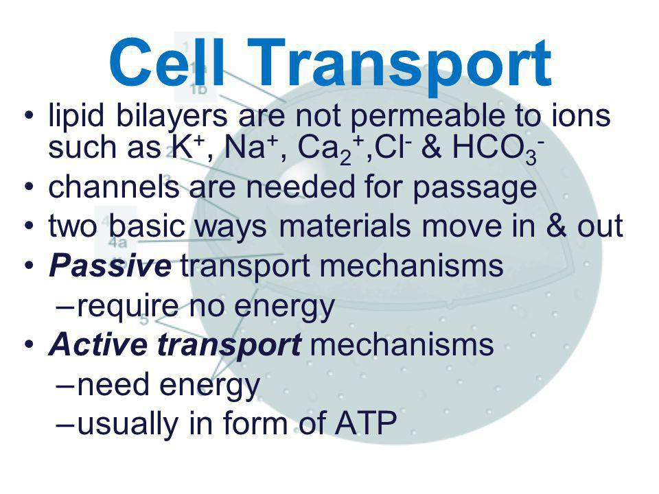 Cell Transport lipid bilayers are not permeable to ions such as K+, Na+, Ca2+,Cl- & HCO3- channels are needed for passage.