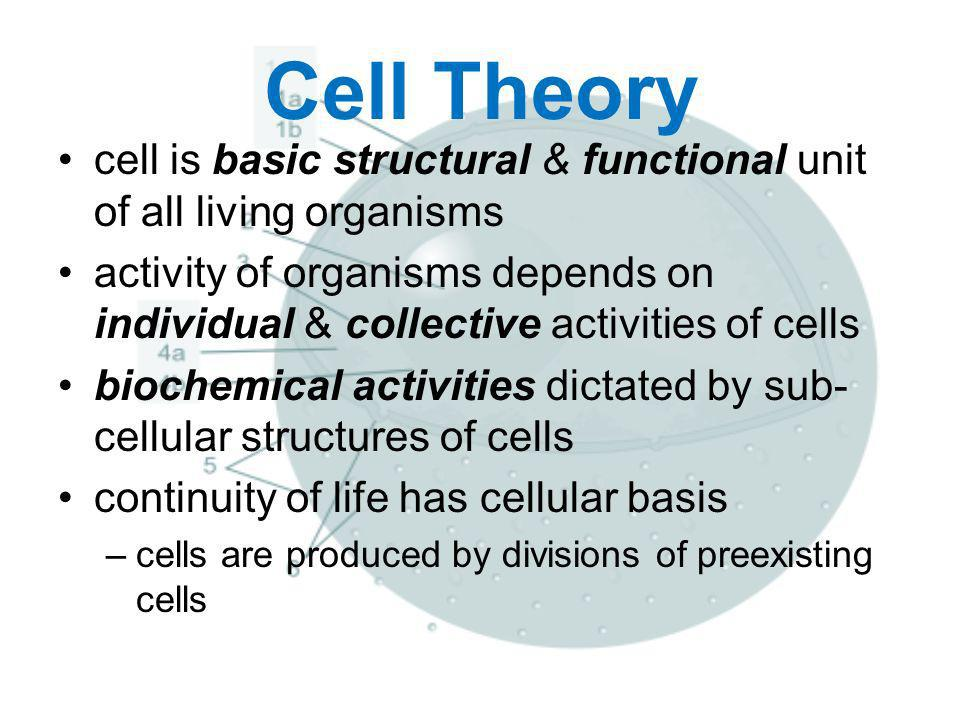 Cell Theory cell is basic structural & functional unit of all living organisms.