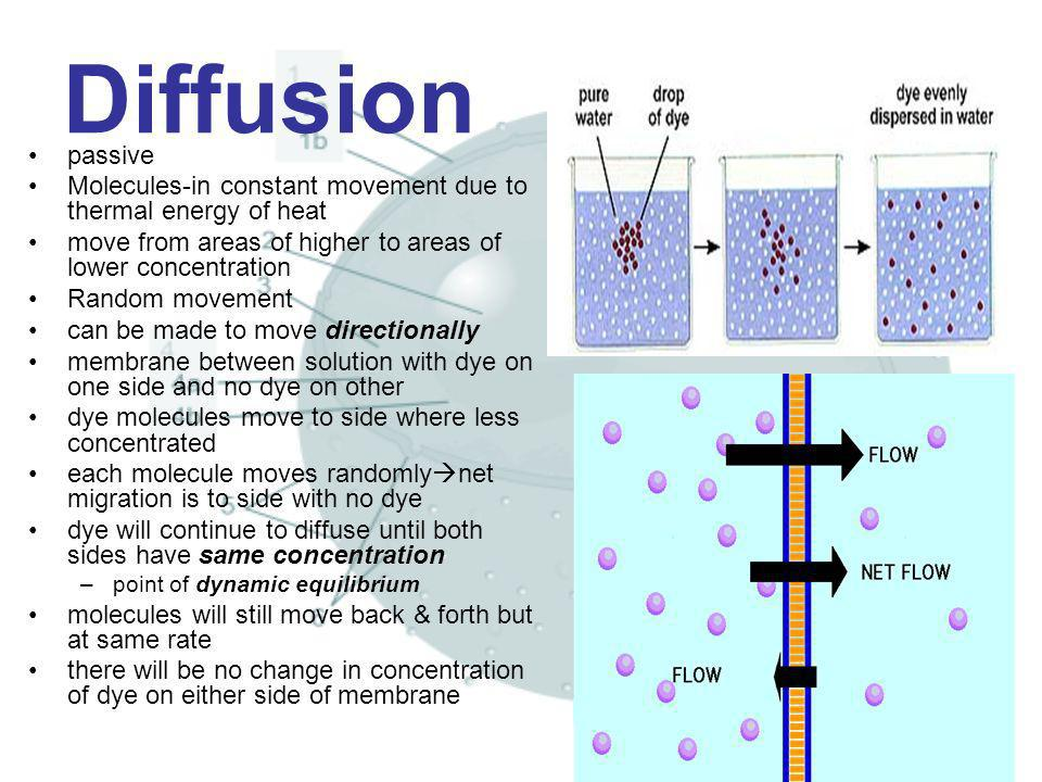 Diffusion passive. Molecules-in constant movement due to thermal energy of heat. move from areas of higher to areas of lower concentration.