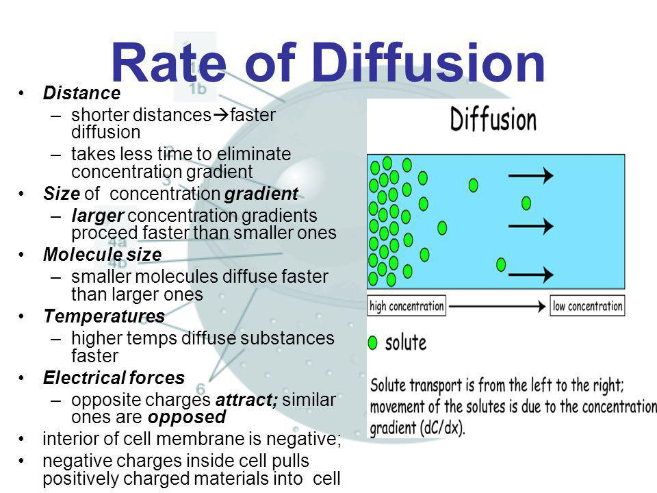 Rate of Diffusion Distance shorter distancesfaster diffusion