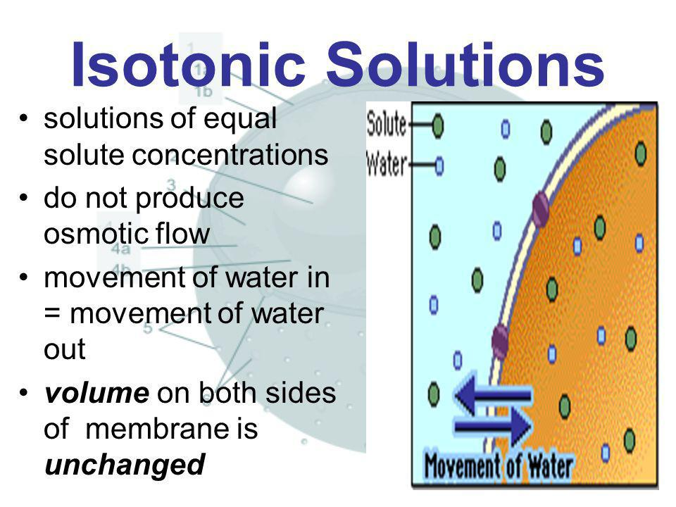 Isotonic Solutions solutions of equal solute concentrations