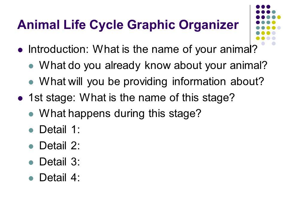 Animal Life Cycle Graphic Organizer