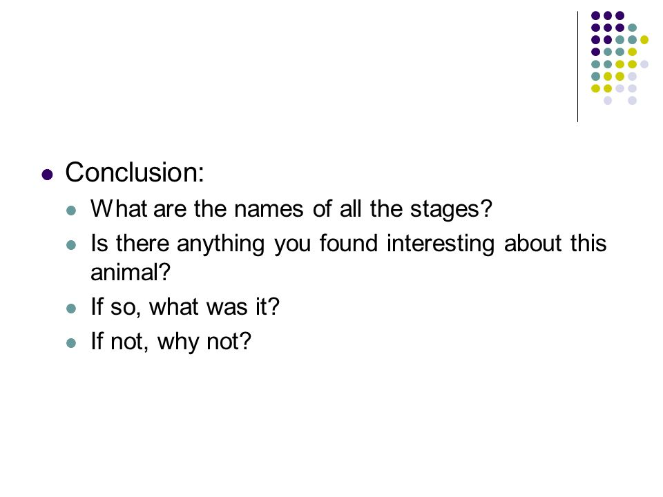 Conclusion: What are the names of all the stages
