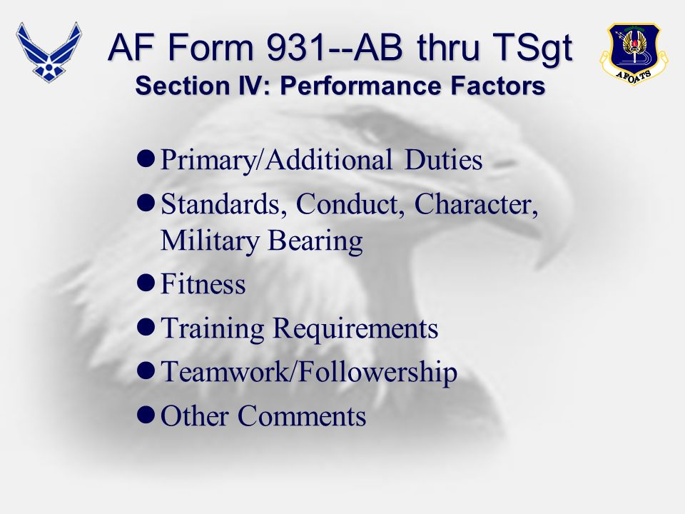 AF Form 931--AB thru TSgt Section IV: Performance Factors