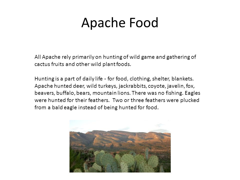 Apache Tribe History Facts Culture Video Lesson | Autos Post
