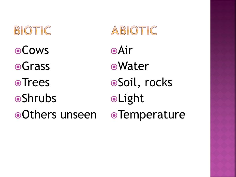 BIOTIC ABIOTIC Cows Grass Trees Shrubs Others unseen Air Water