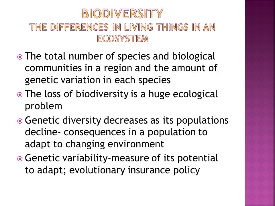 Biodiversity the differences in living things in an ecosystem