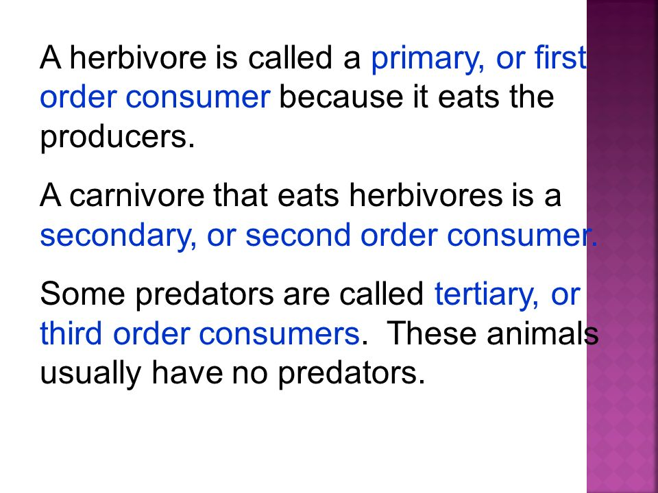 A herbivore is called a primary, or first order consumer because it eats the producers.
