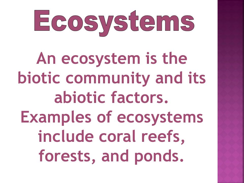 Ecosystems An ecosystem is the biotic community and its abiotic factors.