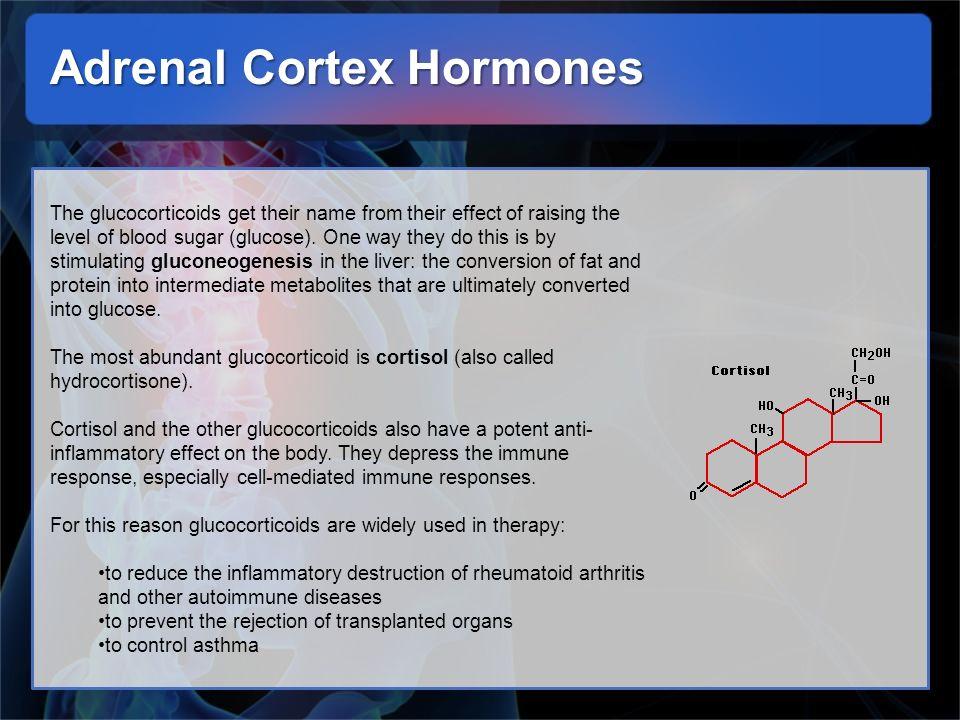 Adrenal Cortex Hormones