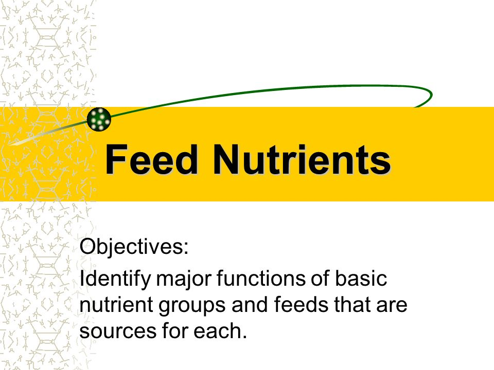Feed Nutrients Objectives: