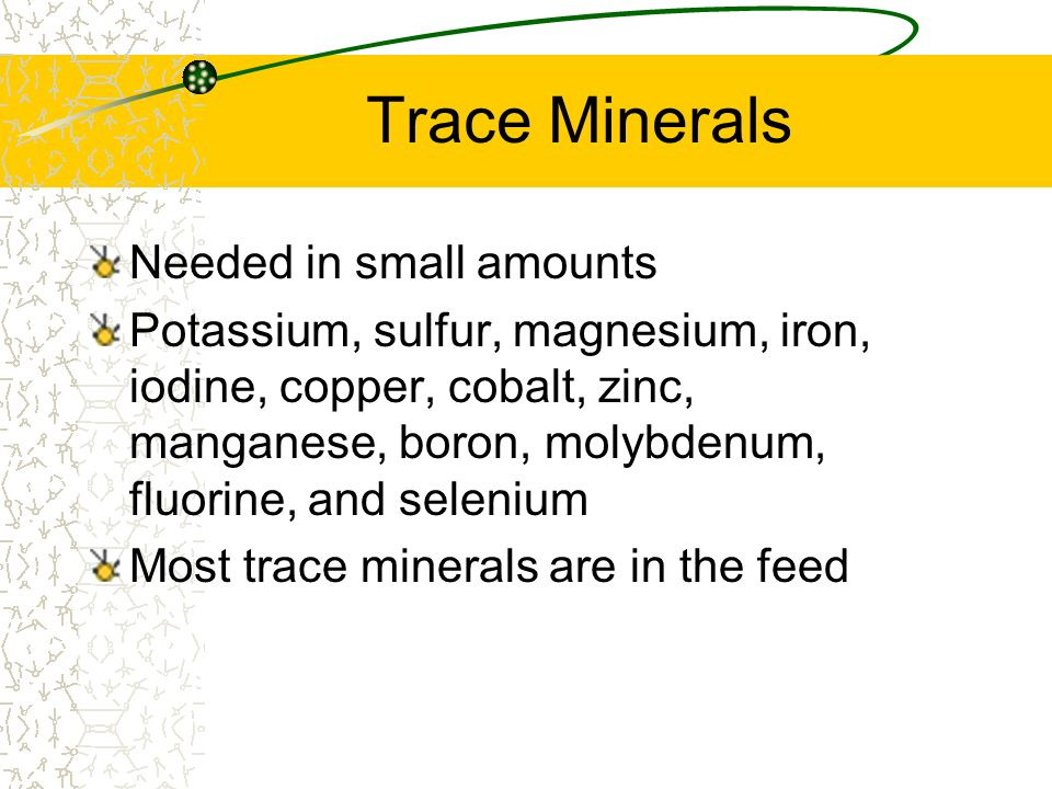 Trace Minerals Needed in small amounts