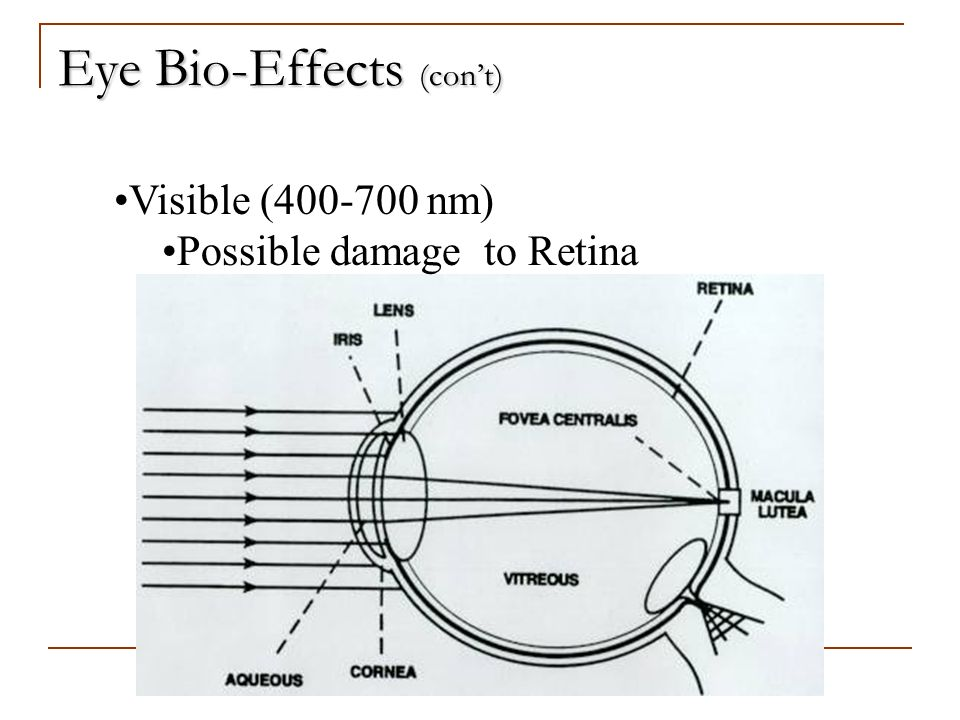 Eye Bio-Effects (con't)