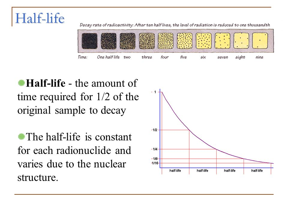 Half-life Half-life - the amount of time required for 1/2 of the original sample to decay.