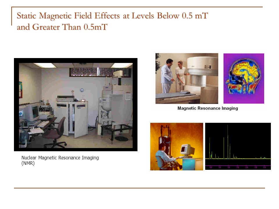 Static Magnetic Field Effects at Levels Below 0