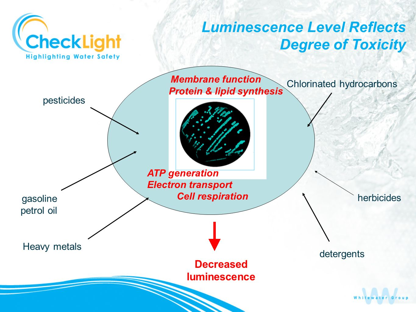 Decreased luminescence