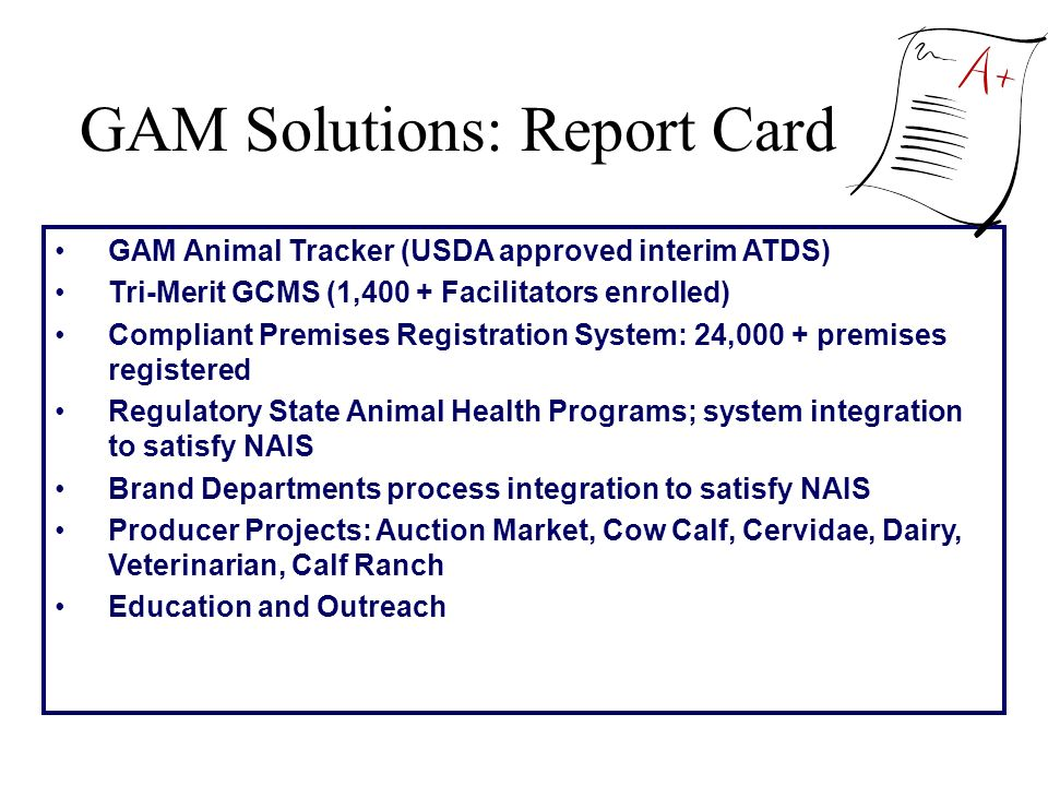 GAM Solutions: Report Card