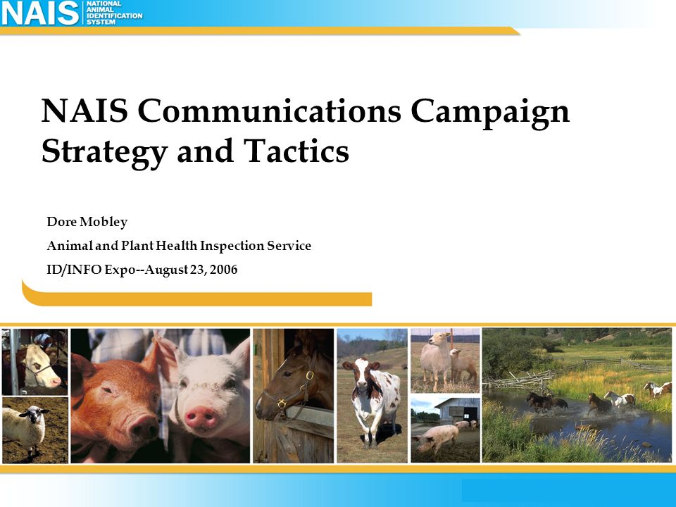 NAIS Communications Campaign Strategy and Tactics