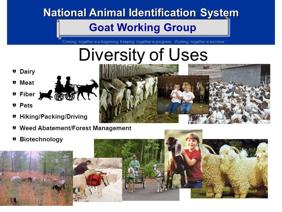Diversity of Uses Dairy Meat Fiber Pets Hiking/Packing/Driving