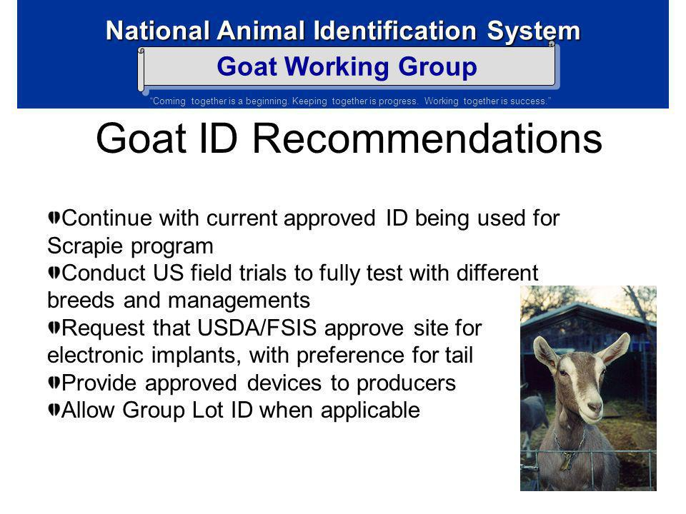 Goat ID Recommendations