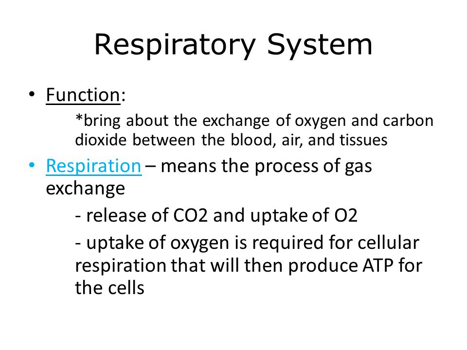 role of respiratory pigments in gaseous Carriage of respiratory gases by y stock objectives you should be able to: describe the structure of erythrocytes describe the role of respiratory pigments.