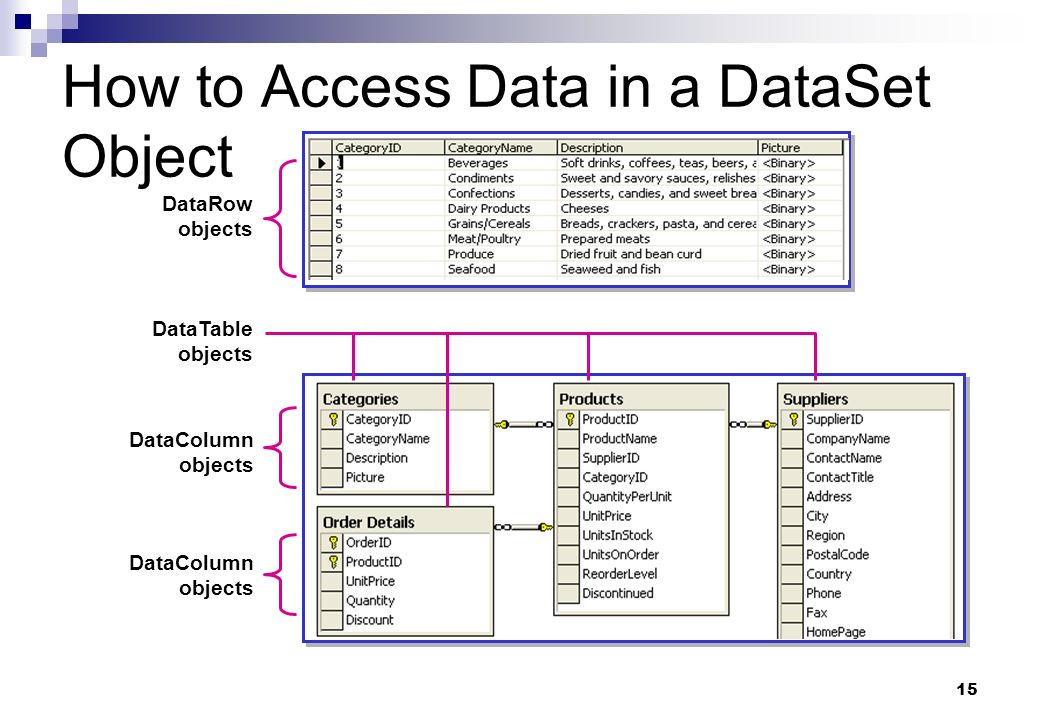 How to Access Data in a DataSet Object