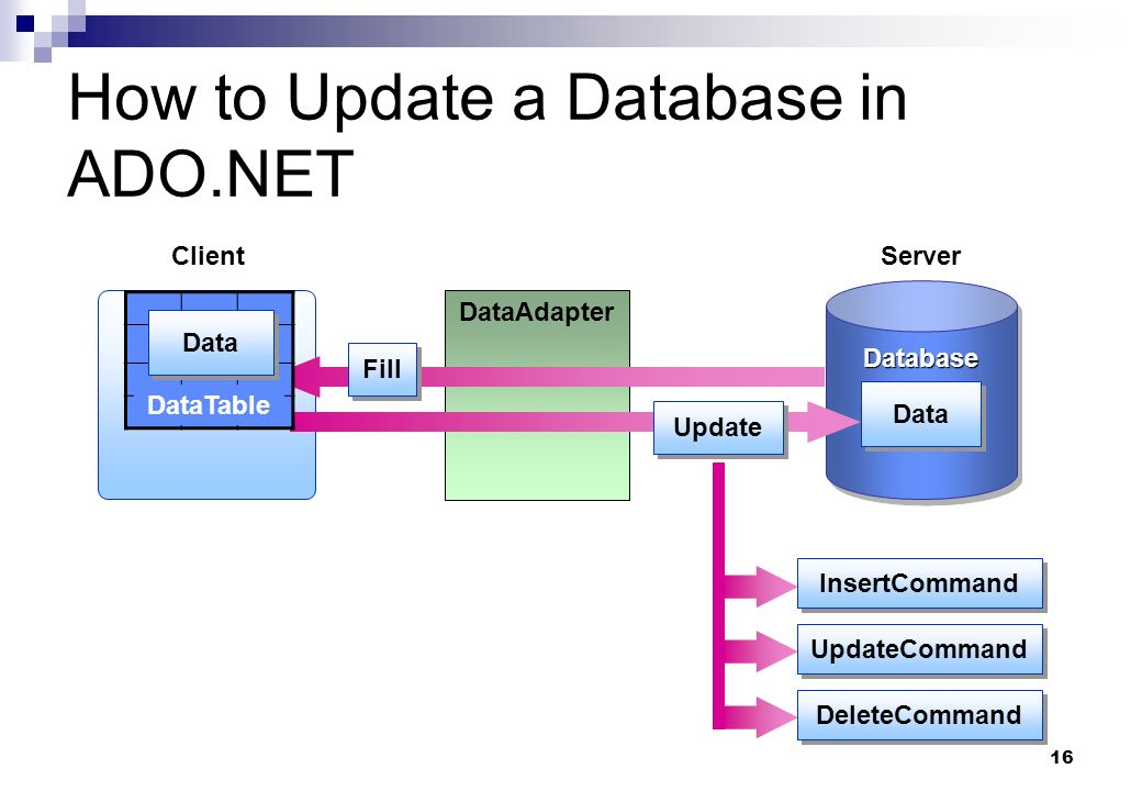 How to Update a Database in ADO.NET