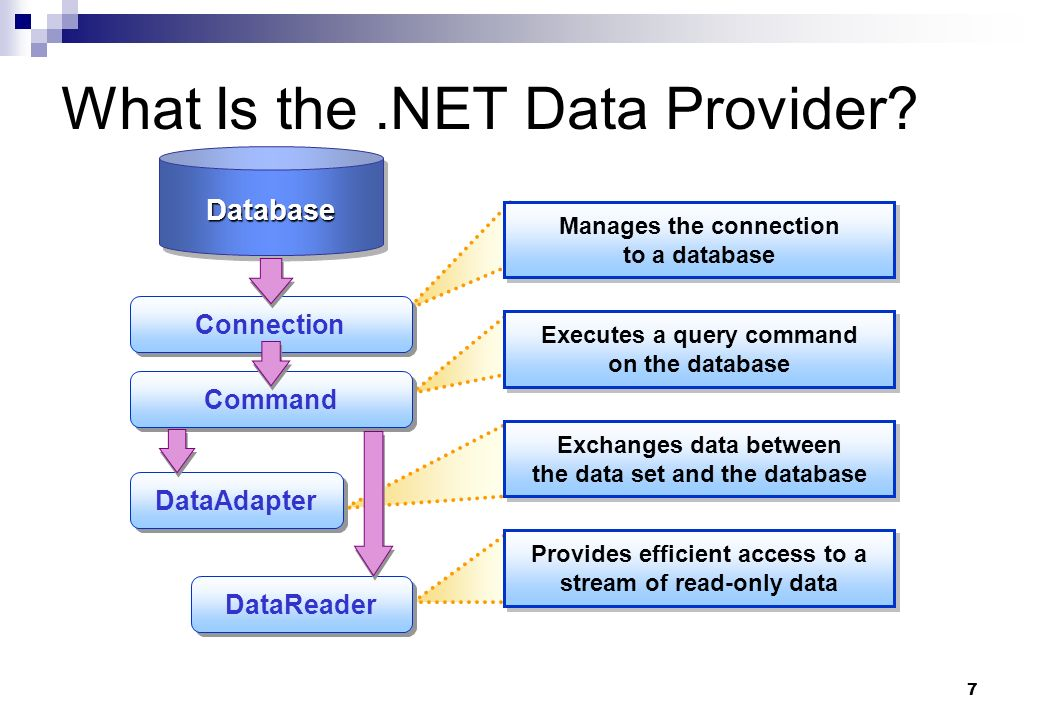 What Is the .NET Data Provider