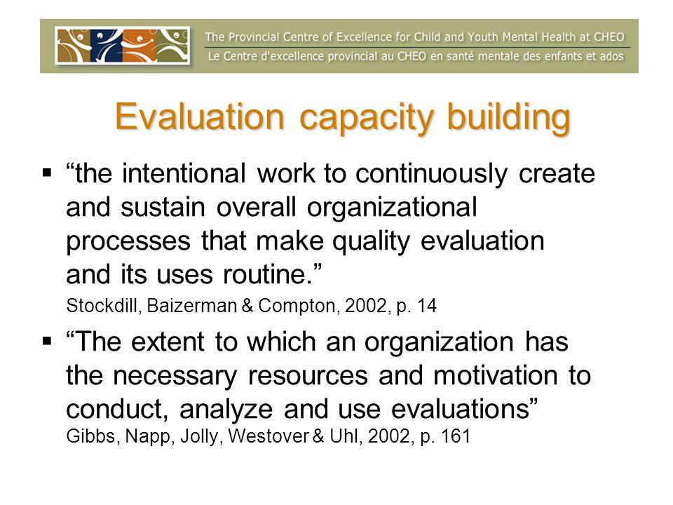 Evaluation capacity building