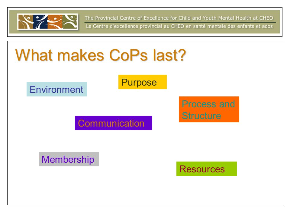 What makes CoPs last Purpose Environment Process and Structure