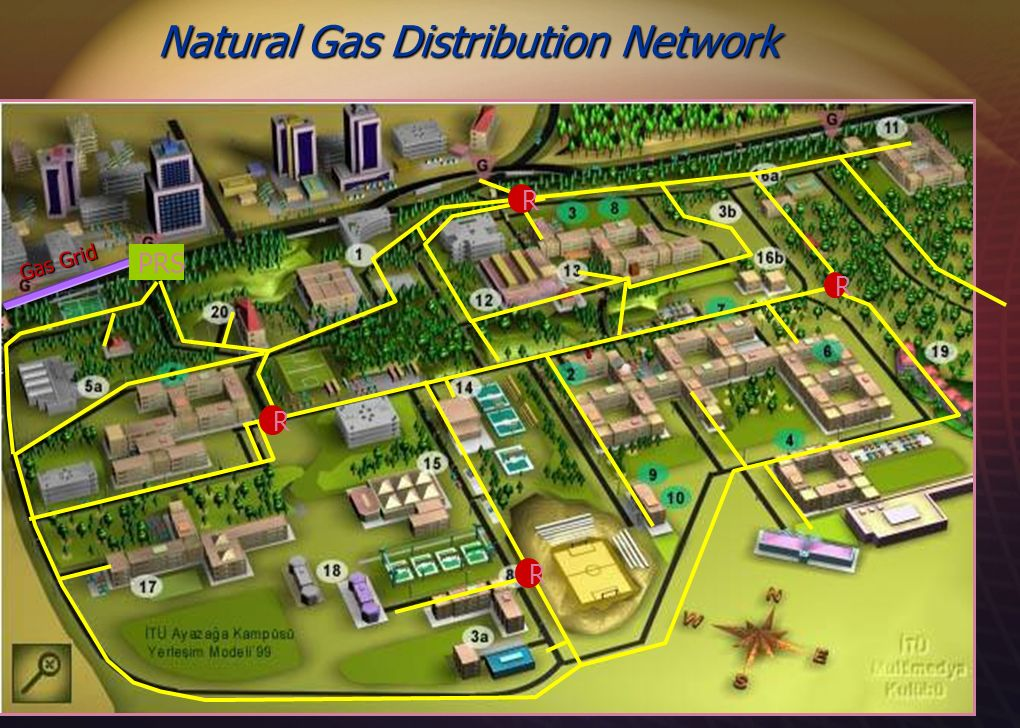 Natural Gas Distribution Network