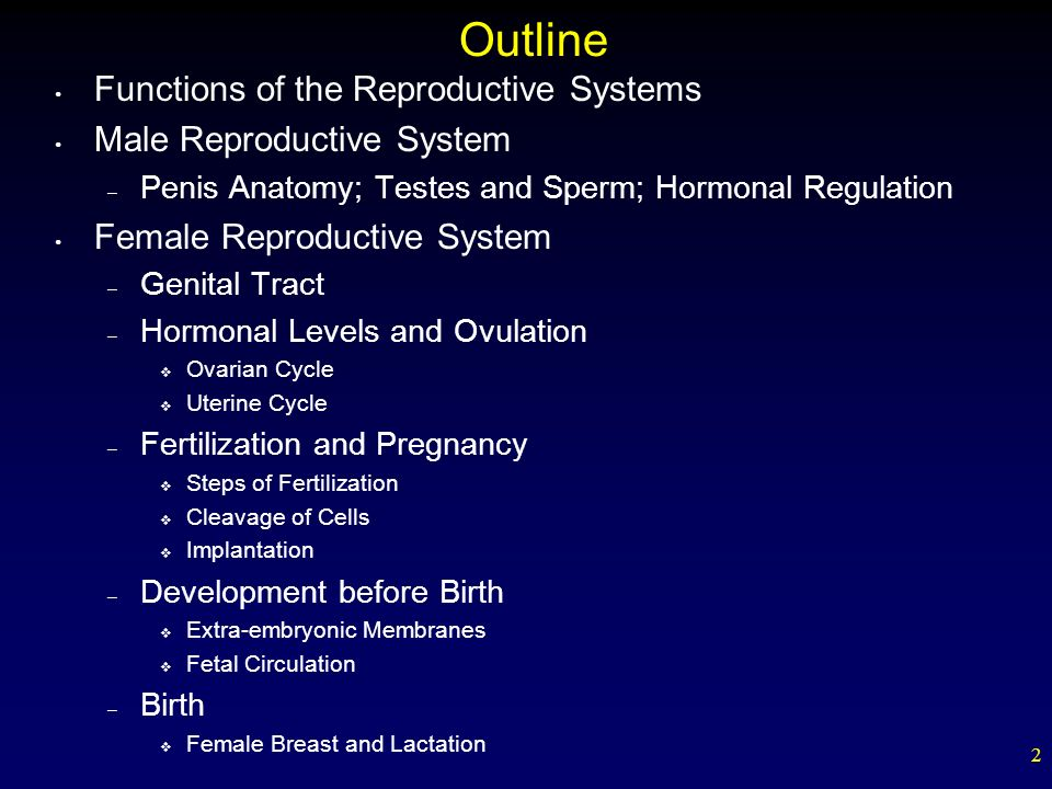 the reproductive system outline Tures develop as boys get older and their reproductive systems grow toward  maturity  to produce sperm until his reproductive system matures  an outline  1.