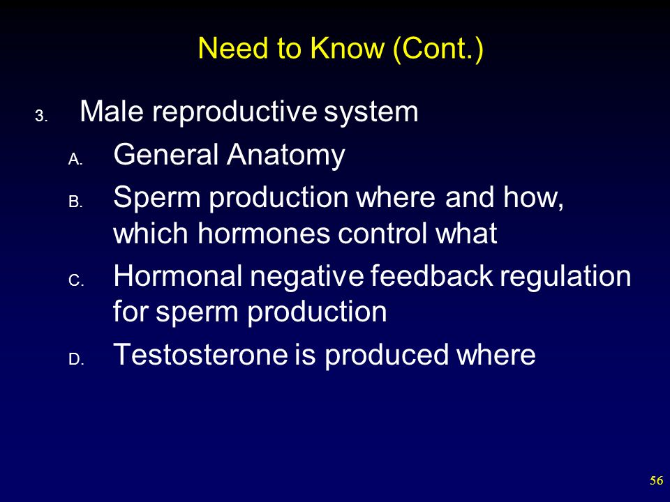 Sperm volume testosterone