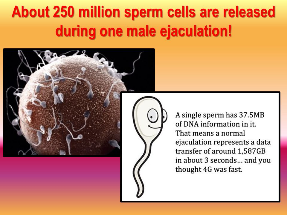 one in a million sperm