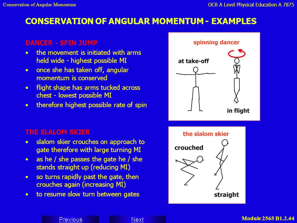 analysis of human movement physical education essay The importance of movement in physical education is  analysis of policies on physical education and  physical activity and physical education.