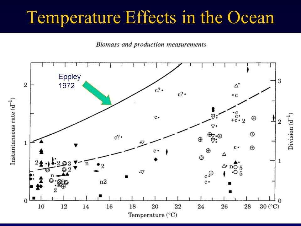 Temperature Effects in the Ocean